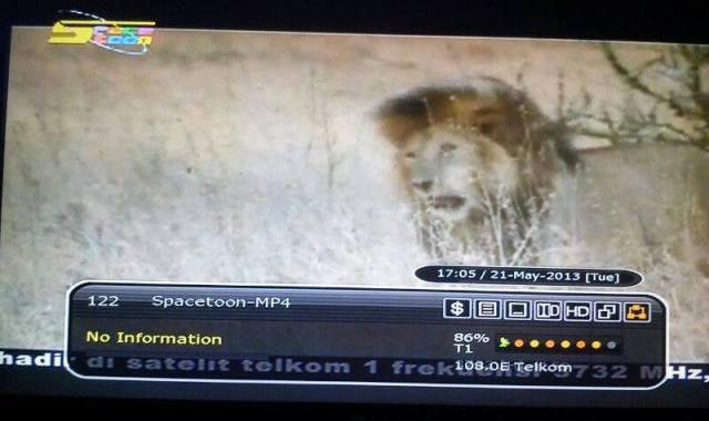 Spacetoon MPEG 4 di Telkom 1. (Zemlenk)